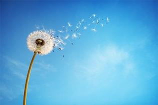 Viiden kohdan viestinnän uudet tuulet
